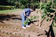 Progetti di agricoltura naturale