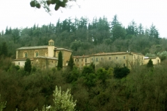 Il Monastero di Sargiano circondato dal Bosco